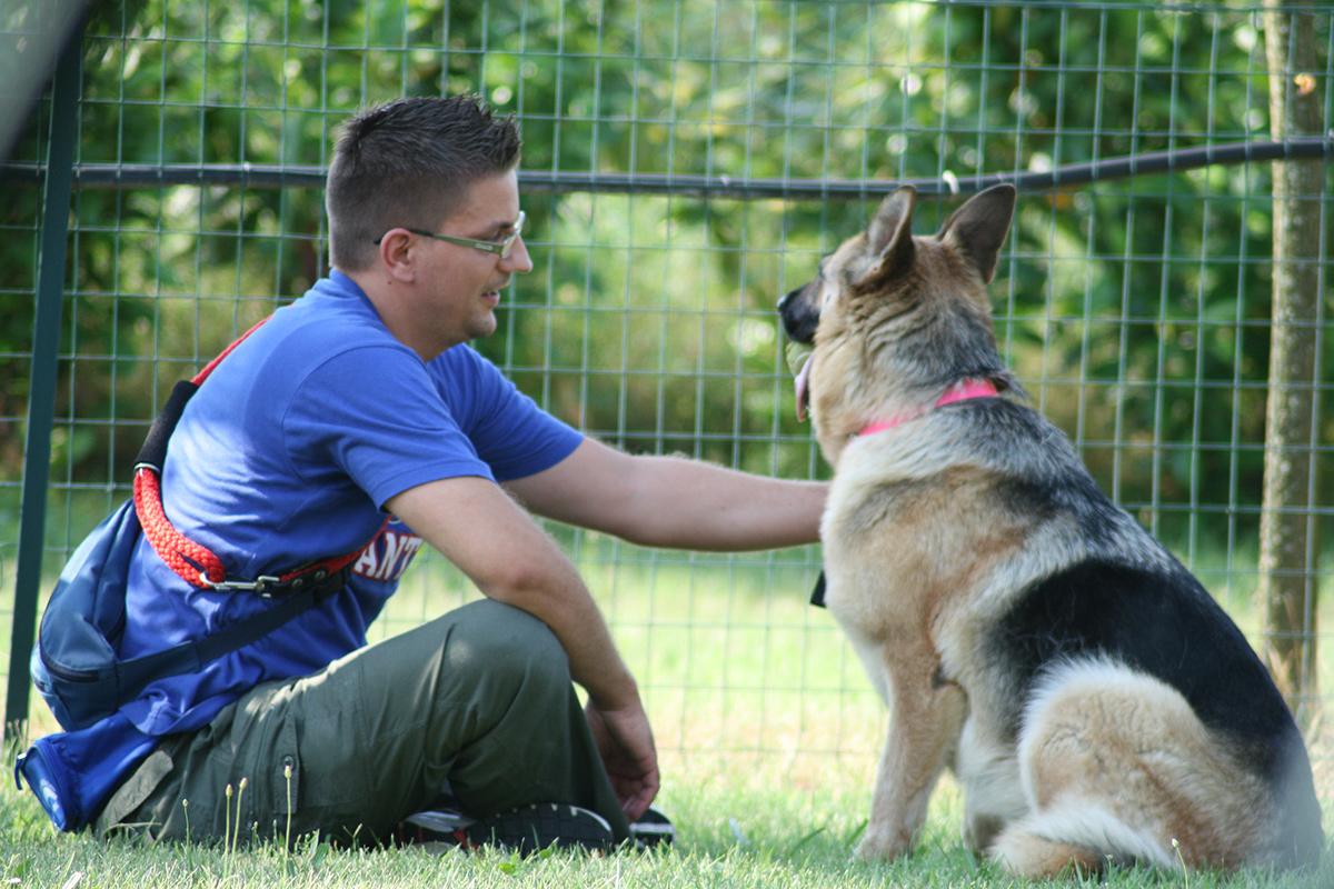 Fase del corso per cani con problemi comportamentali